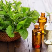 Peppermint Oil Treats Hair Loss