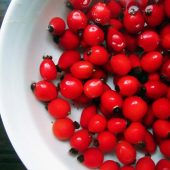 Rosehip Oil for Hair